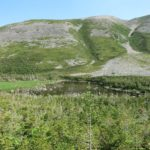 Gros Morne Base 8