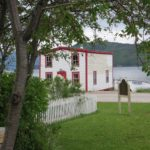 Woody Point 2