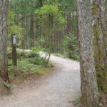 Westwood Lake Campingplatz 1