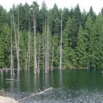 Westwood Lake Campingplatz 2